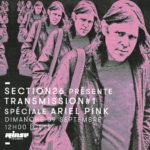 Transmission Rinse France Ariel Pink
