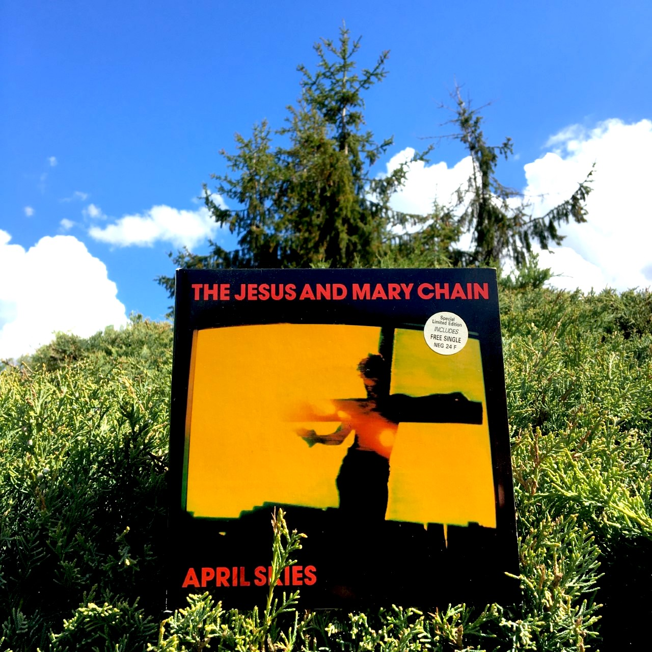 The Jesus and Mary Chain, à ciel ouvert.