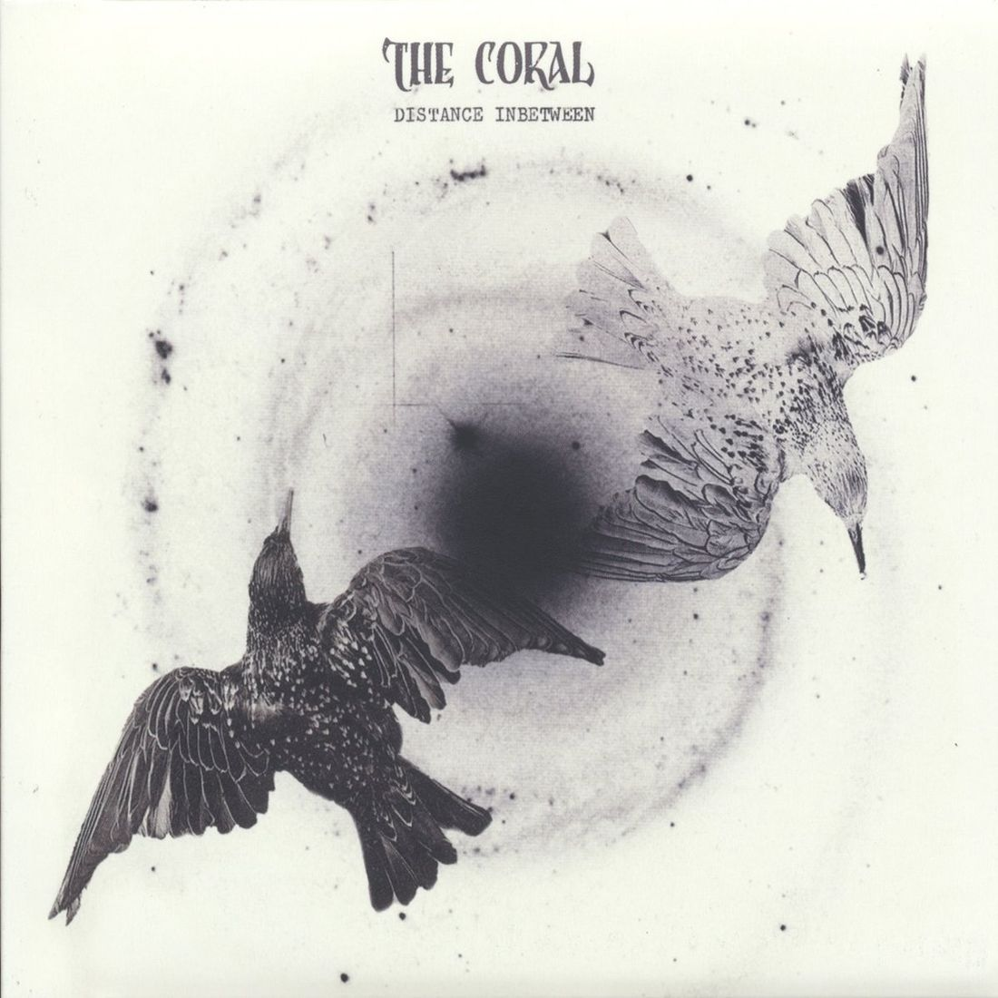 Distance In Between The Coral